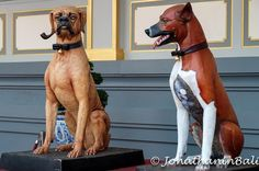 The King's Dogs Bangkok Thailand  For the ebook The Bangkok Story an Historical Guide to the Most Exciting City in the World - go to http://ift.tt/2kq9do7  #aroundtheworld #worldtraveler #jonathaninbali #www.murnis.com #travelphotography #traveler #lonelyplanet #travel #travelingram #travels #travelling #traveling #instatravel #asian #photo #photograph #outdoor #travelphoto #exploretocreate #createexplore #exploringtheglobe #theglobewanderer #mytinyatlas #city #religion #thailand #bangkok…
