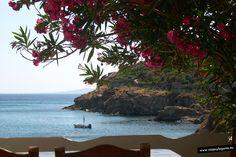 Playa de Agios Stefanos... en Mikonos, islas griegas.