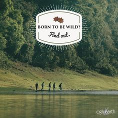 At #SpiceVillage, you can truly connect with nature, at the resort and around it. Trek through Periyar Park with an experienced ranger and find out what it means to truly run wild.  #MEandCGHEarth #GreenTravel