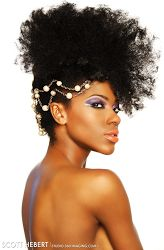Naturally Beautiful Hair: Regal Updo