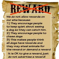 We believe that offering a reward is not in your dog's best interest and decreases your chances of bringing them home.