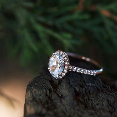 LAST CHANCE to share the shine! Well contribute $50 to Jewelers for Children for all qualifying purchases on Tuesdays in December. See site for details. #sharetheshine #givingtuesdays  style: 17307R14 Click #linkinbio to view in 360! . . . . #JamesAllenRings #roundshape #pave #diamondengagementring #engaged #tree #nature #rocks #rosegold #rosegoldengagementring #tuesday #tuesdaytrends #trendingnow #trendalert #trend #iloveyouforever #couplegoals #goals #engagementringgoals #proposal…