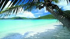 Image result for beaches