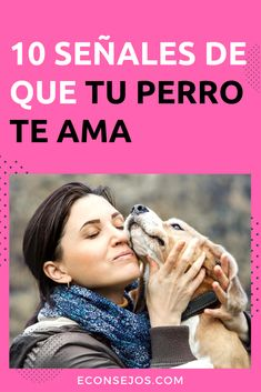 Hunter Dog, Pets 3, Love Pet, Pet Shop, Dog Bed, Poodle, Animals And Pets, Dog Lovers, Best Friends