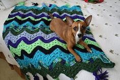 6-Day Kid Blanket Free Crochet Pattern and Video Tutorial