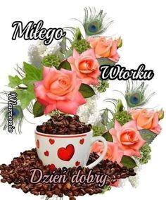 Good Morning, Planter Pots, Buen Dia, Bonjour, Good Morning Wishes