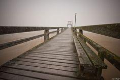 Foggy Photography 11