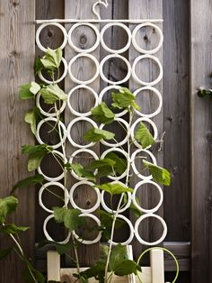 Retire your KOMPLEMENT multi-use hanger from belts, scarves and ties and use it as a support for climbing vines and plants.