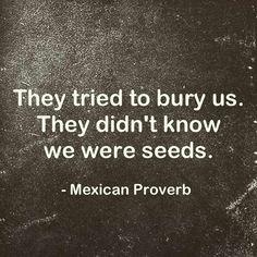 Tried to bury us...  We were seeds