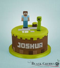 Minecraft cake....only I would make it square instead....a round minecraft cake just doesn't make sense to me
