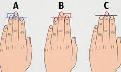 La longueur de nos doigts