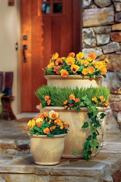 Orange pansies, violas, and Panolas provide a warm autumnal welcome in this grouping. Try pairing colorful and distinctive flowers like these with a textural plant, like a grass.