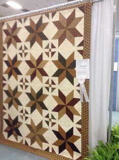Big star block from Missouri Star Quilt Company