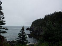 Cobscook ,Maine