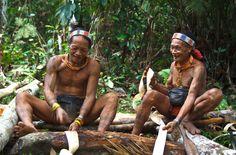 Une entreprise de biomasse veut déboiser 20.000 hectares de l'île de Siberut pour ses plantations industrielles. Avec la forêt, c'est la culture exceptionnelle du peuple Mentawaï qui est menacée. Aidons les hommes-fleurs à préserver leur merveilleuse forêt en Indonésie !