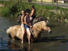 nianska Boys, Girls, Horses, Animals, Baby Boys, Toddler Girls, Animales, Daughters, Animaux