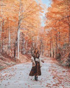 Down a road in fall season. #seasons #fall #outono #autumn #fallseason #leaves #coloursofautumn @ohhcouture