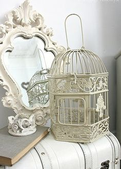 Birdcage and chest