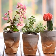 Gardens Discover Cement Plant Holders Display your plants in the cutest way! Cement Art Concrete Crafts Concrete Projects Concrete Pots Diy Home Crafts Garden Crafts Garden Projects Diy Projects Diy Cement Planters Diy Cement Planters, Concrete Crafts, Cement Garden, Hand Planters, Cement Flower Pots, Concrete Projects, Garden Planters, Diy Home Crafts, Diy Crafts To Sell