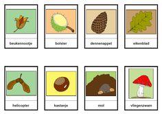 stempelkaarten rond verschillende onderwerpen; handig voor bij linkprint, magneetletters,... teksten maken