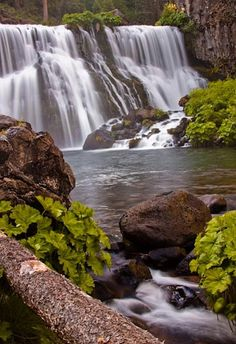 McCloud Falls - Mt Shasta National Park, California