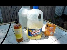 How to: DIY Organic Insecticide/Fungicide recipe
