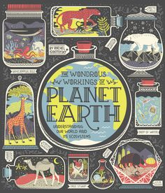 The Wondrous Workings of Planet Earth: Understanding Our World and Its Ecosystems      by Rachel Ignotofsky     https://www.amazon.com/gp/product/0399580417?tag=randohouseinc7986-20