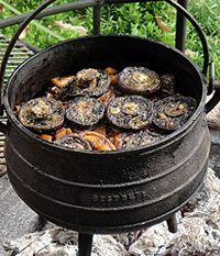 South African food - Ina Paarman's Lamb & Vegetable Potjie topped with Mushrooms. Braai Recipes, Oxtail Recipes, Lamb Recipes, Wine Recipes, Cooking Recipes, South African Dishes, South African Recipes, Africa Recipes, Biltong