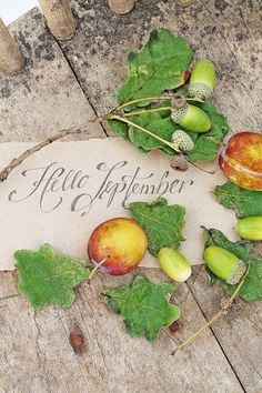 Fall ( by Vibeke Design ) Seasons Of The Year, Months In A Year, Four Seasons, 12 Months, Mabon, Autumn Day, Autumn Leaves, September Wallpaper, Welcome September