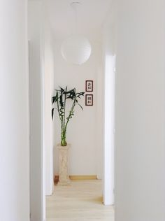 Zen decoration