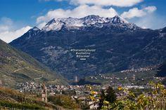 C'è una valle in cui l'uomo ha messo radici sulla pietra e la pietra ha affondato nell'uomo le sue.  È la Valtellina.  Scopri i suoi tesori: http://www.distretticulturali.it/valtellina/  #distretticulturali #discover #valtellina