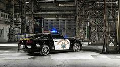 California Highway Patrol tribute