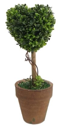 Floral Heart Topiaries in Pot