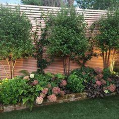 59 Amazing Backyard Privacy Fence Design Ideas - How to Build a Wood Privacy Fence Wood Privacy Fence, Privacy Fence Designs, Garden Privacy, Privacy Landscaping, Backyard Privacy, Backyard Garden Design, Backyard Fences, Front Yard Landscaping, Diy Fence