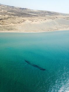 Lake Michigan is So Clear Right Now its Shipwrecks Are Visible From the Air | Smart News | Smithsonian
