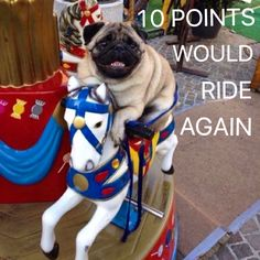 10 points would ride again