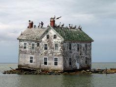 Isla de Hollanden la bahía Chesapeake, EEUU