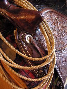 Saddle up!  Beautiful light enhances an old saddle.