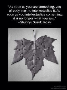 -Shunryu Suzuki Roshi
