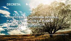 Decreta11.05.14 | Andrea de la Mora