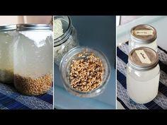 How to Make Rejuvelac [ for making vegan cheese] - YouTubeהכנת נוזל פרוביוטי ריג'וולאק להכנת יוגרט טבעוני מחלב סויה וגם לגבינות בכלל