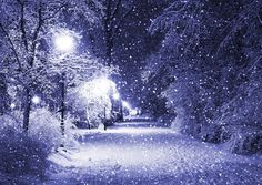 Winter Night Ultra HD Desktop Background Wallpaper for : Multi Display, Dual Monitor : Tablet : Smartphone Winter Szenen, Winter Magic, Winter Night, Winter Christmas, Snow Night, Winter Season, Christmas Time, Christmas Scenery, Winter Park