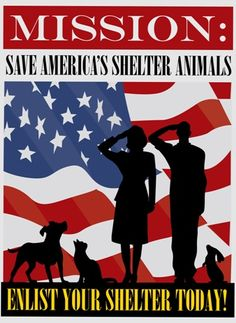 Save America's Shelter Animals - see www.NoKillAdvocacy.com