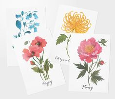 Floral postcard set of 4 by oanabefort on Etsy, $9.20