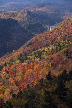 Fall colors, Vermont. Would love to revisit The Barston Inn (B) in Addison, Vermont.