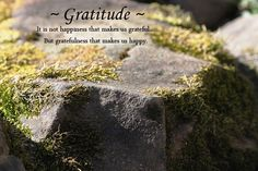 It is not happiness that makes us grateful but gratefulness that makes us happy. via Helena.Murphy #Gratitude