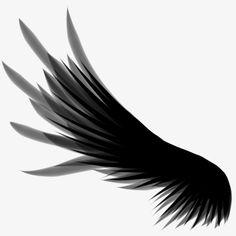 O sonho de ASAS Negras, ASAS Para Voar, ASAS Negras, As ASASImagem PNG