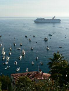 Catalina Island harbor. This will us soon.
