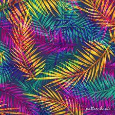 Daniela Duarte has 62 royalty-free patterns available for purchase Pattern Bank, Pattern Design, Free Pattern, Flora Und Fauna, Iranian Art, Jungle Print, Flower Wallpaper, Textile Design, Print Patterns