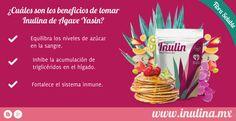 La Inulina de Agave Yasin tiene múltiples beneficios a tu salud. #Yasin #Inulina #Fibra #Salud